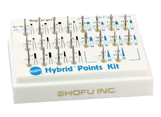 Hybrid Points